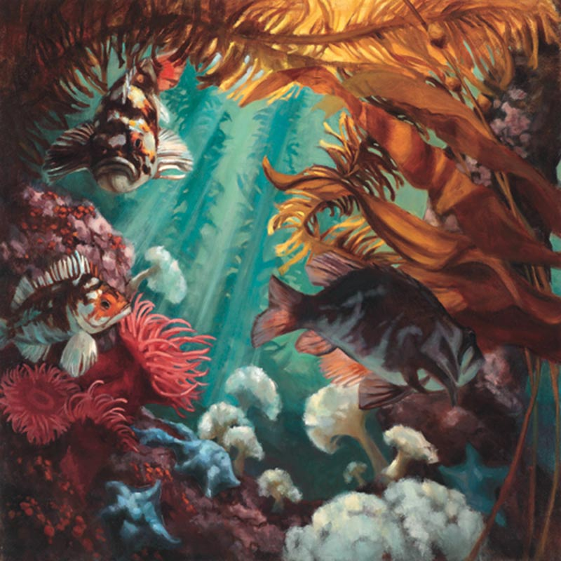 Painting depicting subtidal kelp garden with rockfish and other marine life