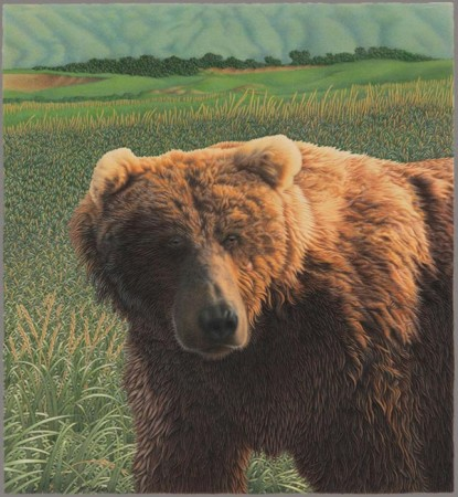 A grizzly bear in sunlight looks to the left with a landscape of fields and rolling hills behind him.