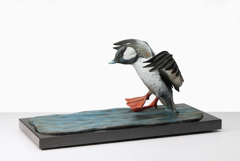 This work is a sculpture in bronze on a black granite base depicting a bufflehead landing in the water.