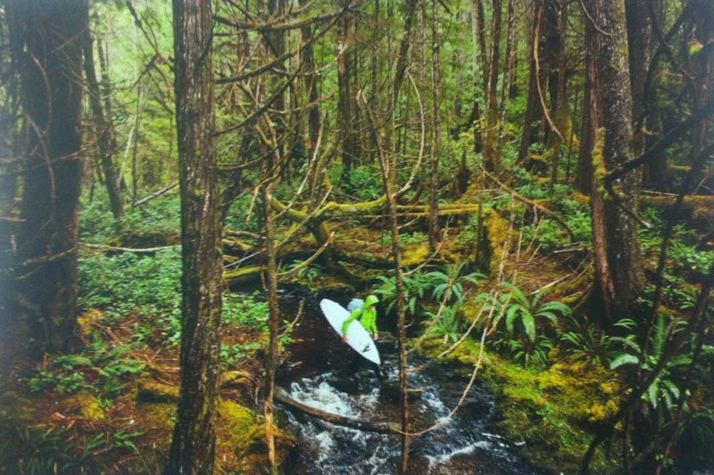 A surfer in a green jacket walks through the forest and across a stream carrying his surfboard