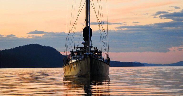 Could you join Raincoast aboard our research vessel in 2018?