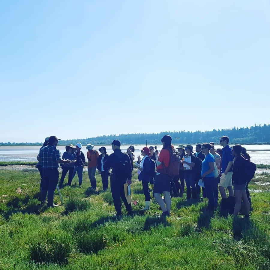A group of ecologists and local interested people attend a workshop on the estuary.