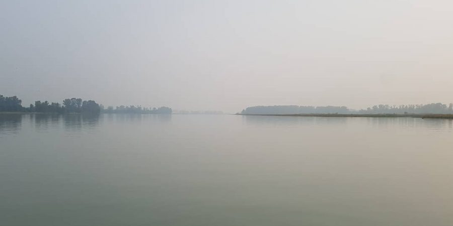 This is a photo looking out over the Fraser estuary. It is a body of water with some low bushes or trees in the distance, and it is very grey and hazy like a fog.