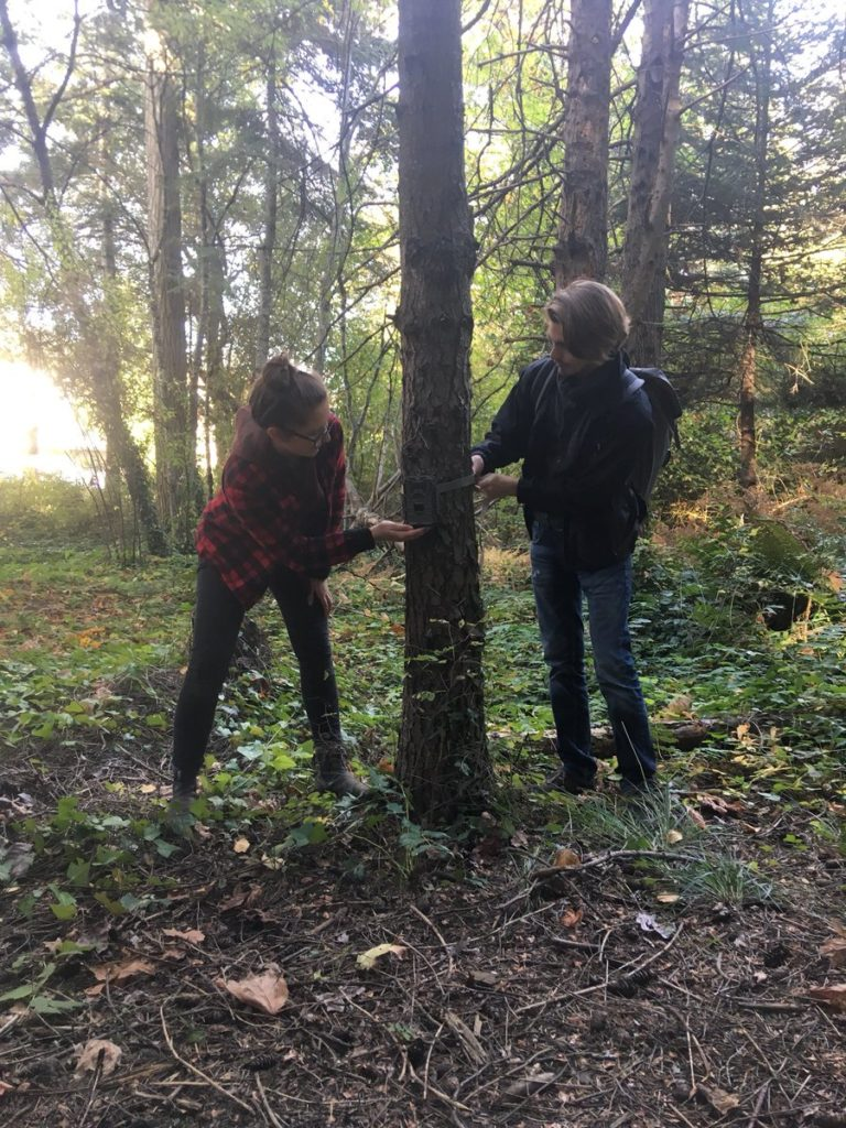 Hands on learning in the forest at the University of Victoria with the Salish Sea Emerging Stewards program.