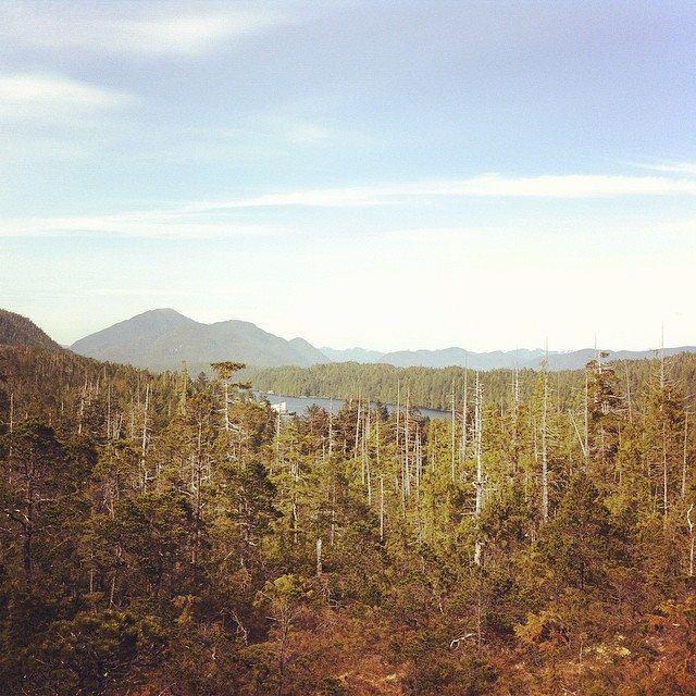 Kitasoo/ Xai'xais territory at Klemtu and a view of the Great bear Rainforest with reddish trees and mountain in the background