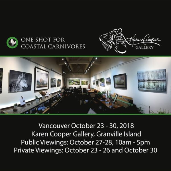 Last public viewing opportunity for the One Shot for Coastal Carnivores Exhibit at the Karen Cooper Gallery
