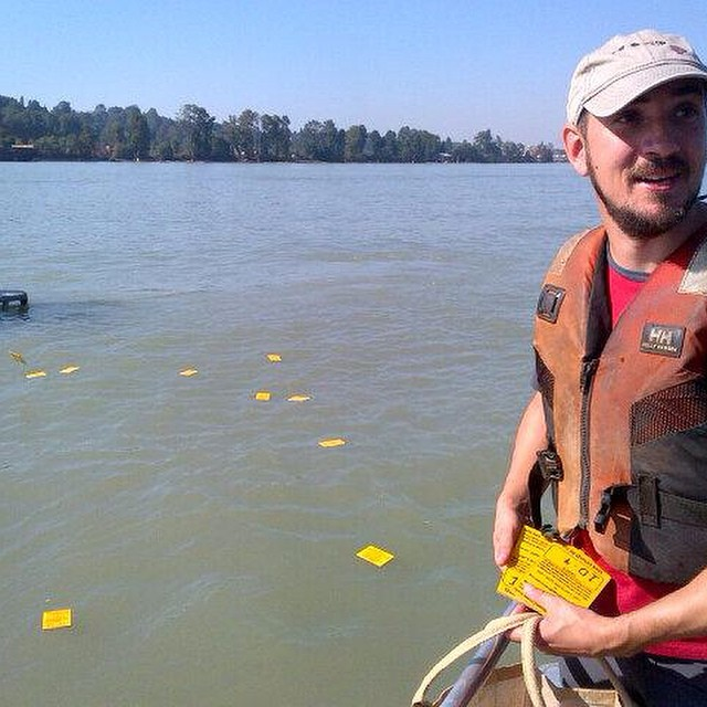 Raincoast staff Ross Dixon stands by the Fraser river holding yellow drift cards in his hand while other yellow drift cards are seen floating away