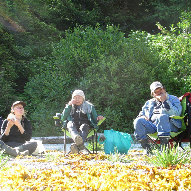 Two staff members of Raincoast sit on chairs while one sits on the ground, and eat salmon sandwiches in Wuikinuxv forest
