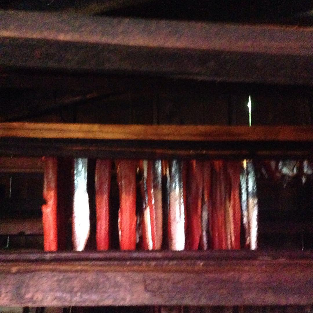 red and white salmon hanging in a row being smoked