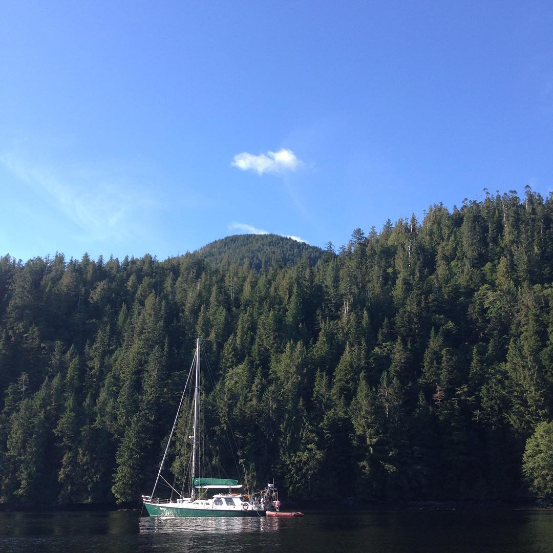 Raincoast boat Achiever docked by beautiful forest