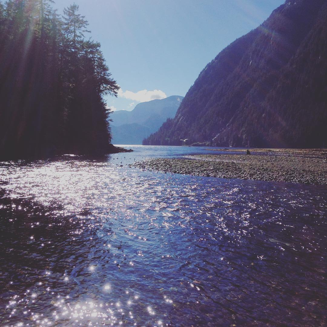 beautiful sparkling water in the Great bear rainforest