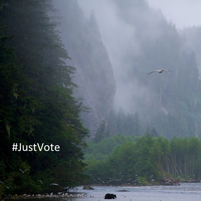 Beautiful image of misty mountains and forest banks beside a river with the caption Just Vote