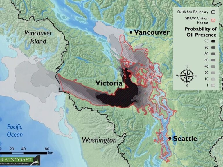 Probable oil presence and orca whale habitat