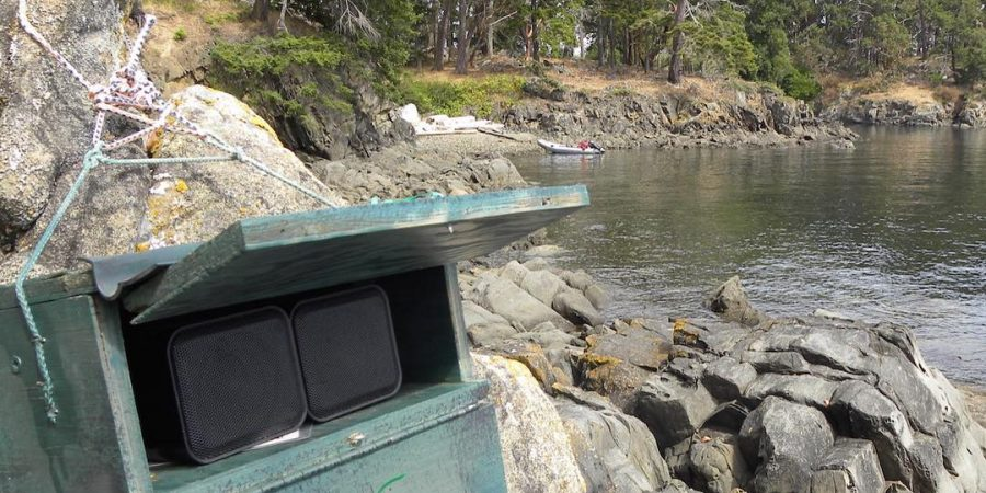 A big green speaker set on rocks for the meso predator release study conducted by Raincoast