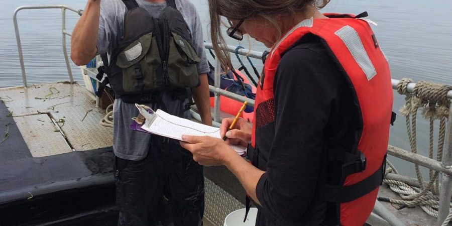 Two raincoast staff on a boat use a device to look at fish closely and identify it