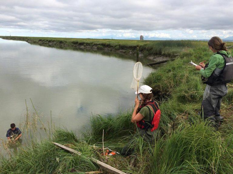 Conducting habitat surveys