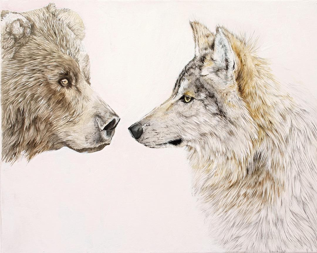 Pencil drawing of a bear and wolf sniffing each others' face.