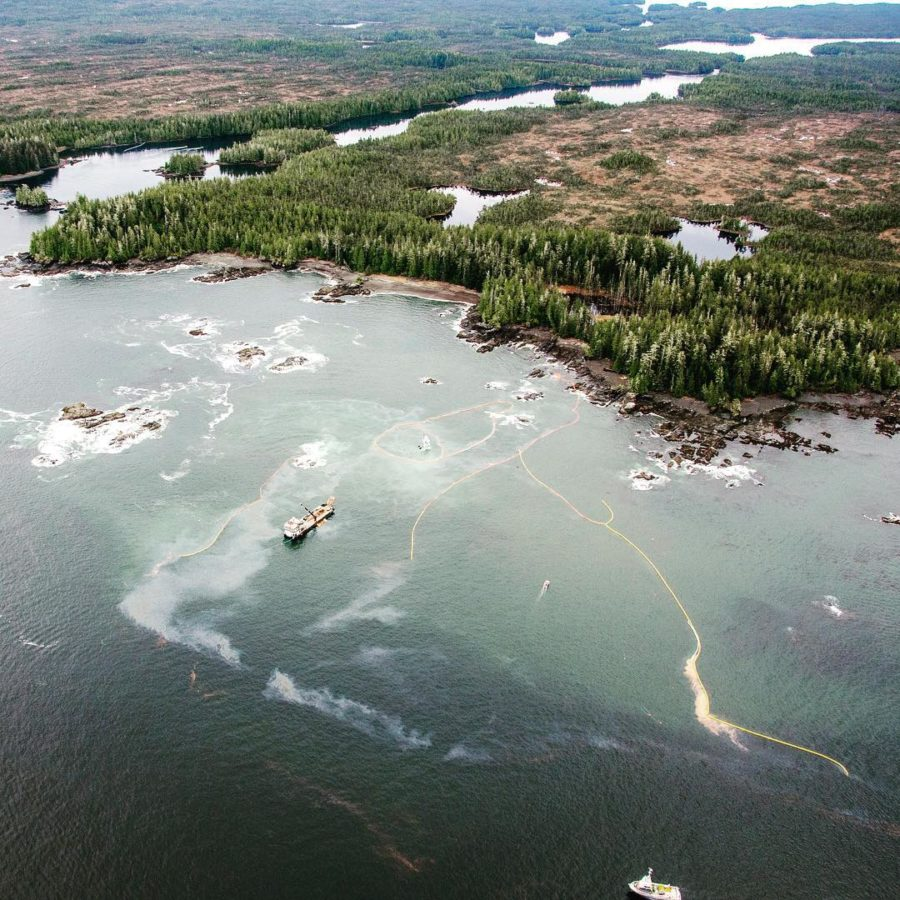 ocean coast with diesel spill visible