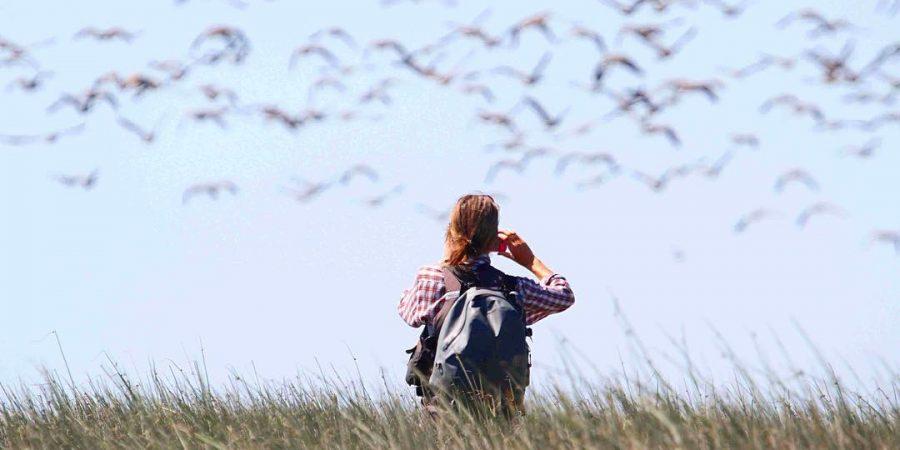 Raincoast staff Misty watching birds in the Fraser River Estuary