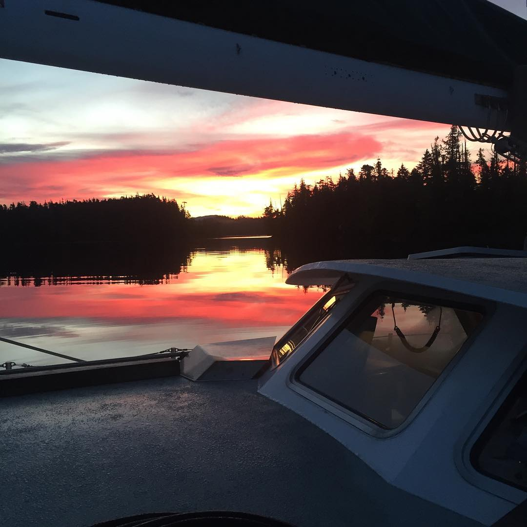 Looking out over the bow of the Achiever (sailboat) to see a fire coloured sunrise over the trees in the distance.