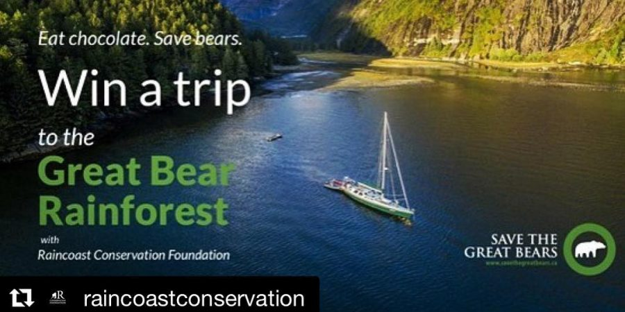 "A sailboat on calm water with text over top saying ""win a trip to the great bear rainforest. Eat chocolate save bears."""