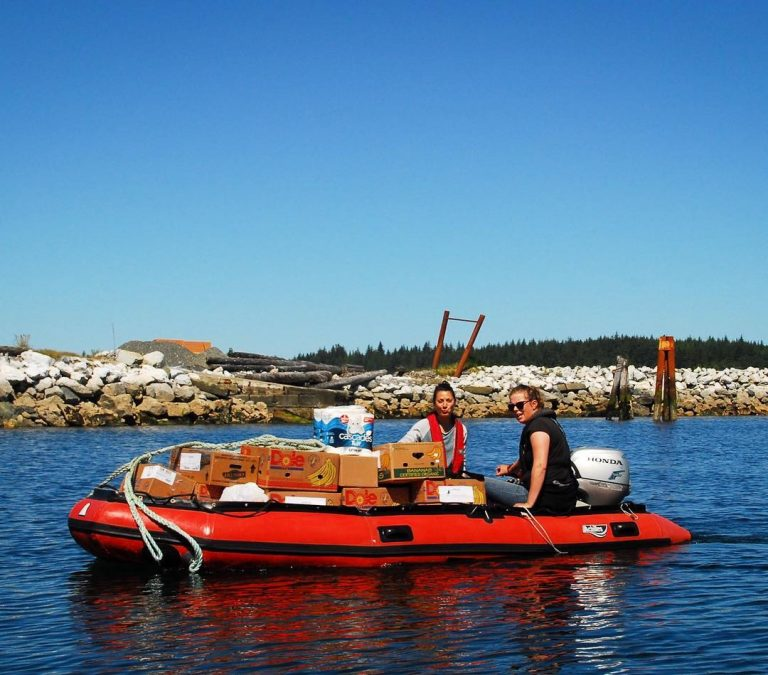 Heading out for cetacean survey