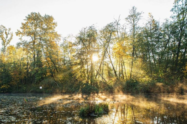 In search of the Lower Fraser's lost streams