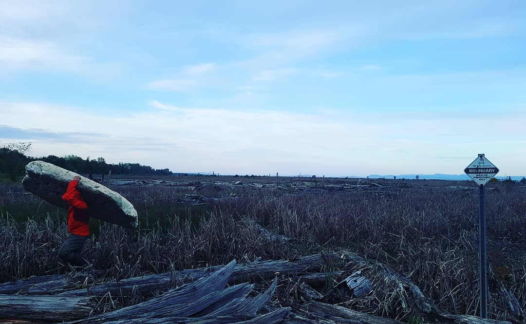 Person carrying away a big piece of driftwood mid range in the photograph