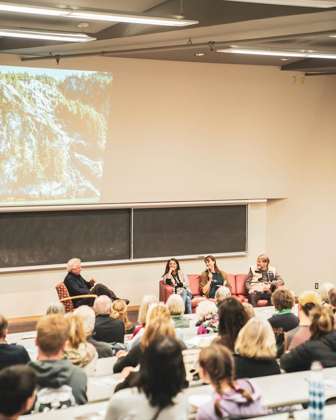 Partial picture of rainforest visible on a projected slide on the wall while four speakers sit below in front of an audience in a medium size room
