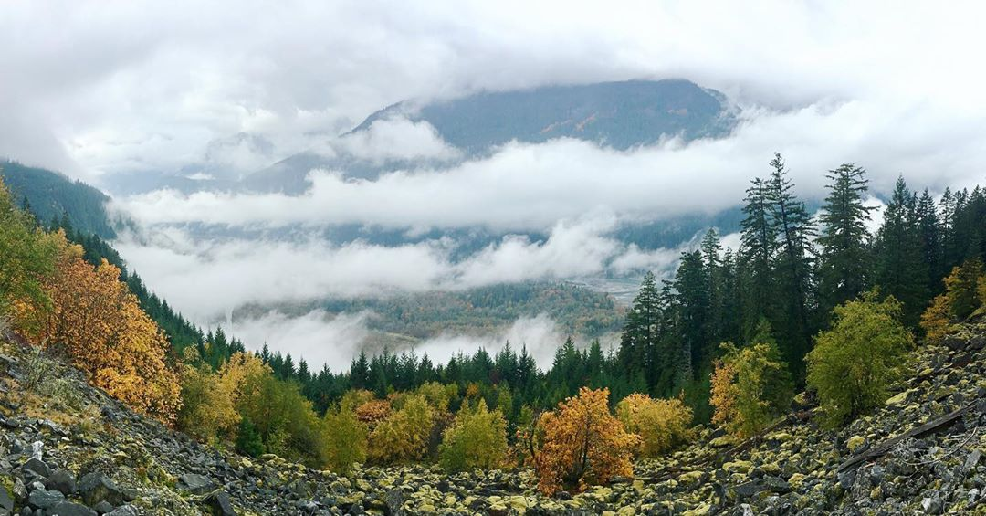 Photo of a Squamish valley landscape, with mountains shrouded in clouds towering above a forest in Fall colours