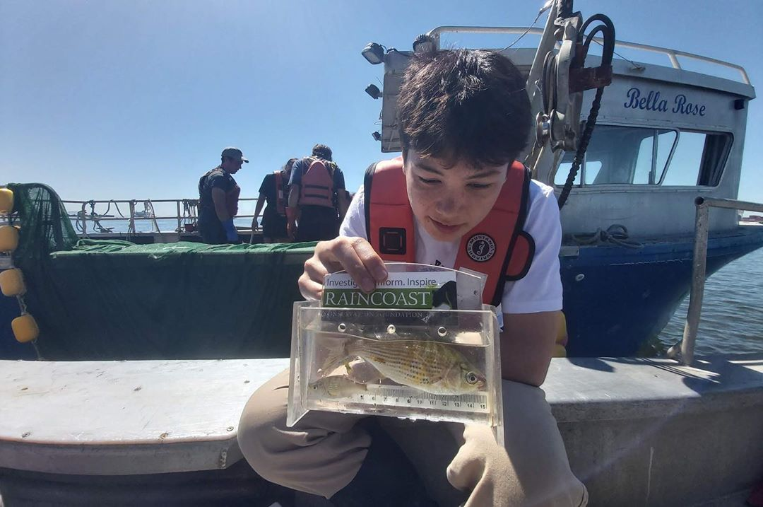 A young boy in a white t shirt and red life jacket is seen on the deck of a boat looking at a juvenile salmon inside a plastic transparent box used for sampling