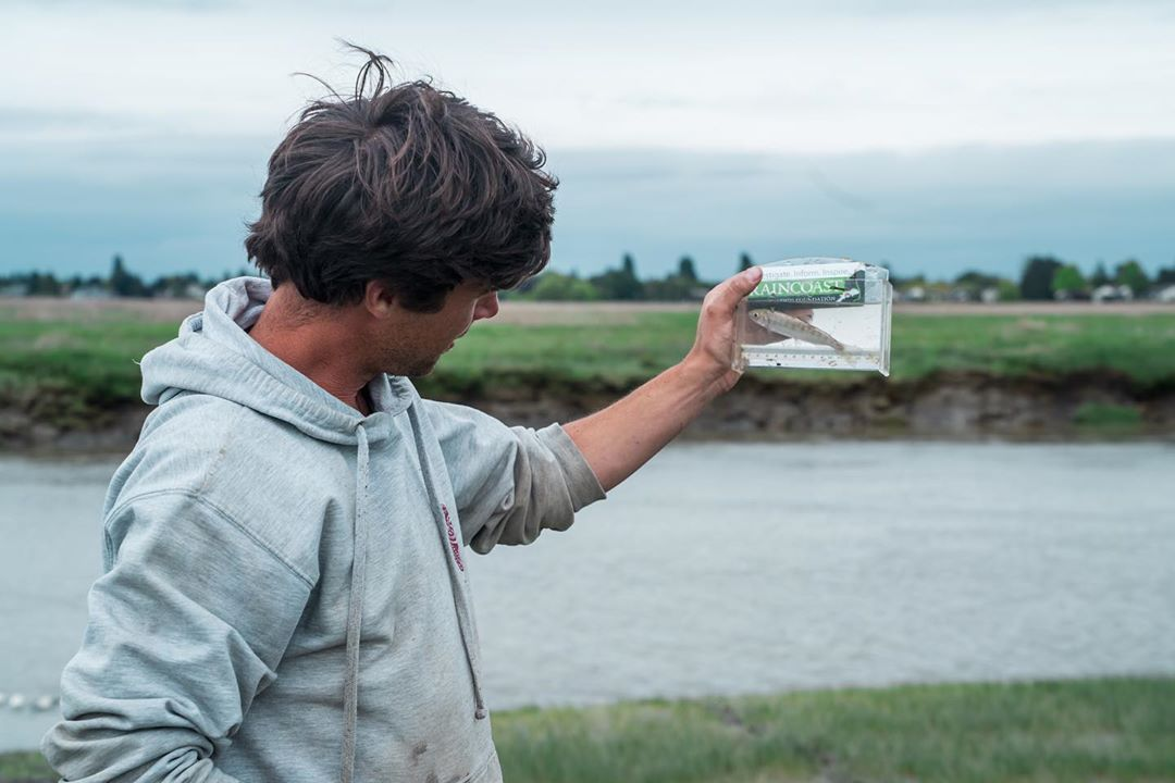 Young male scientist in pale blue hoodie holds up small plastic rectangular container with salmon in it to the background of the Fraser river estuary