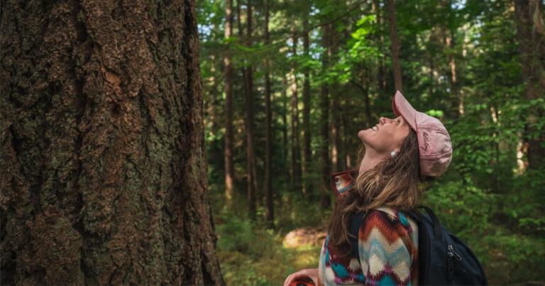 Re: The Pender Islands Big Tree Registry Update