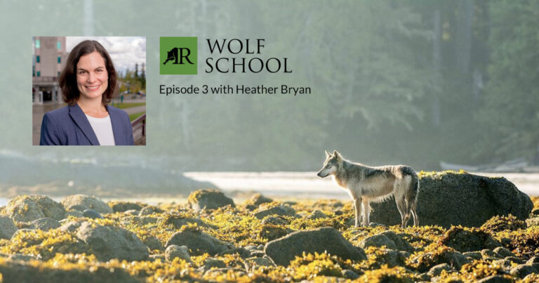 Dr. Heather Bryan featured in upcoming episode of Wolf School