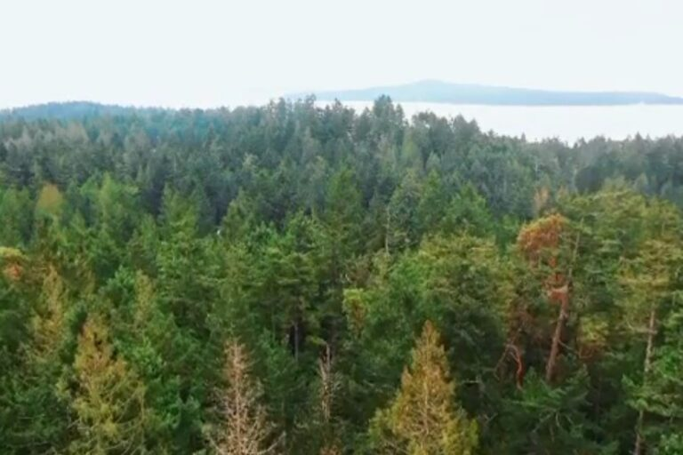 New campaign to purchase at North Pender Island