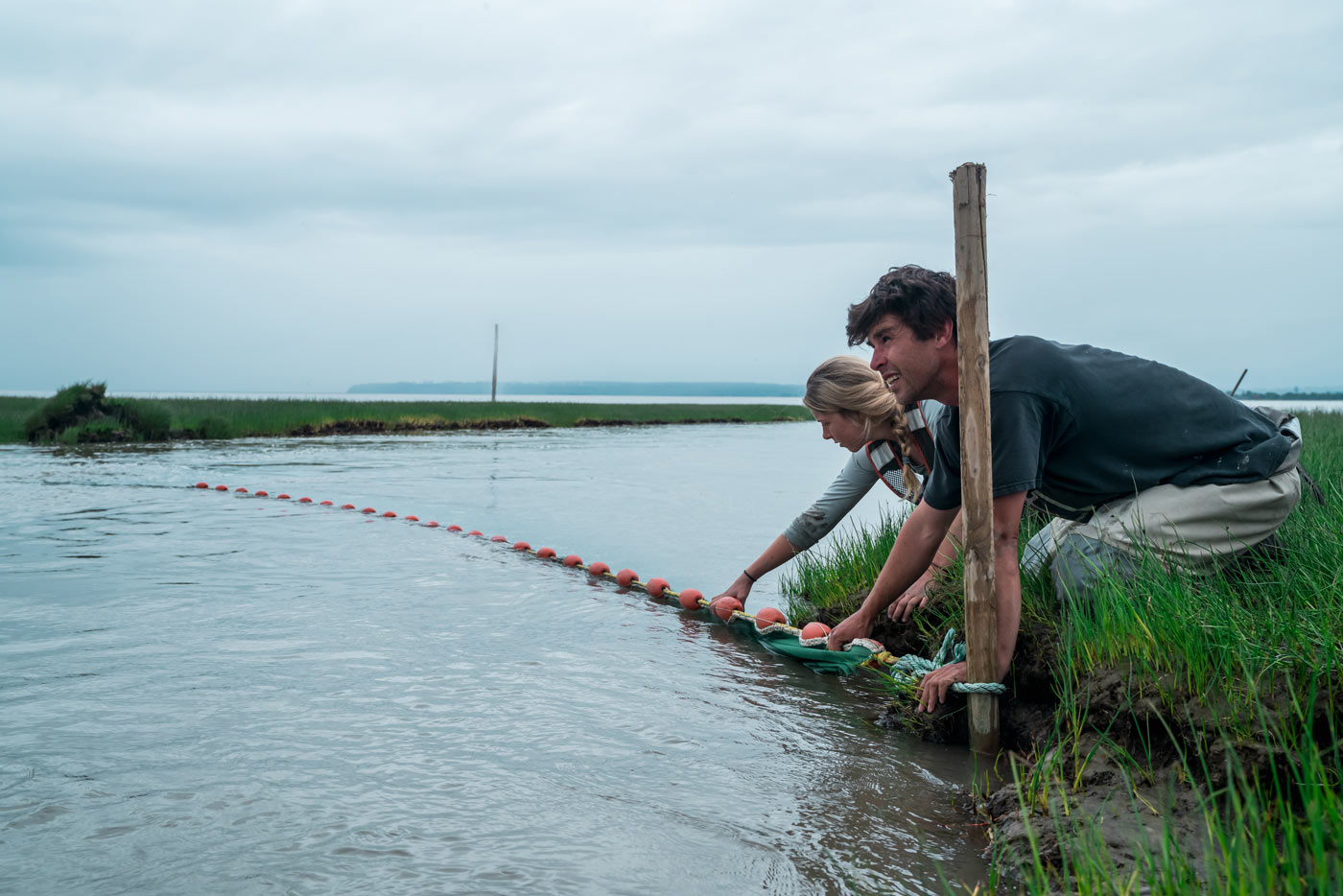 Two researchers squat on the banks of the Fraser river estuary. They are holding a long net in place stretching across the water under a grey blue sky.