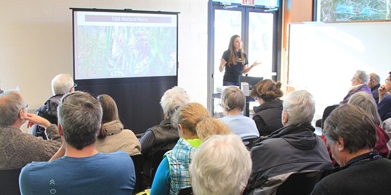 World Wetland Day Webinar from years past.