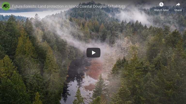 Future forests: land protection in island Coastal Douglas-fir habitats