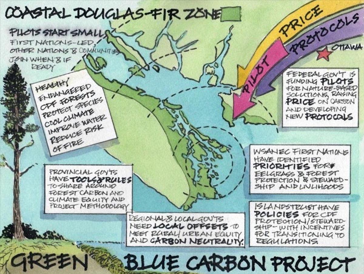 Coastal Douglas Fir Zone Workshop illustration and notes.