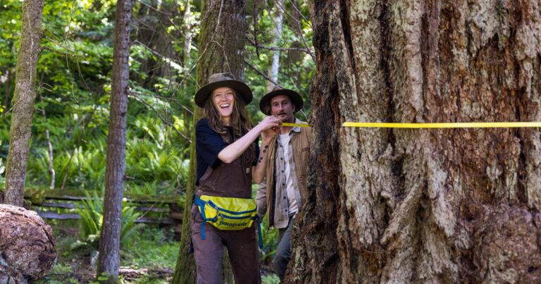 Big Tree Registries of the Pacific Northwest and beyond