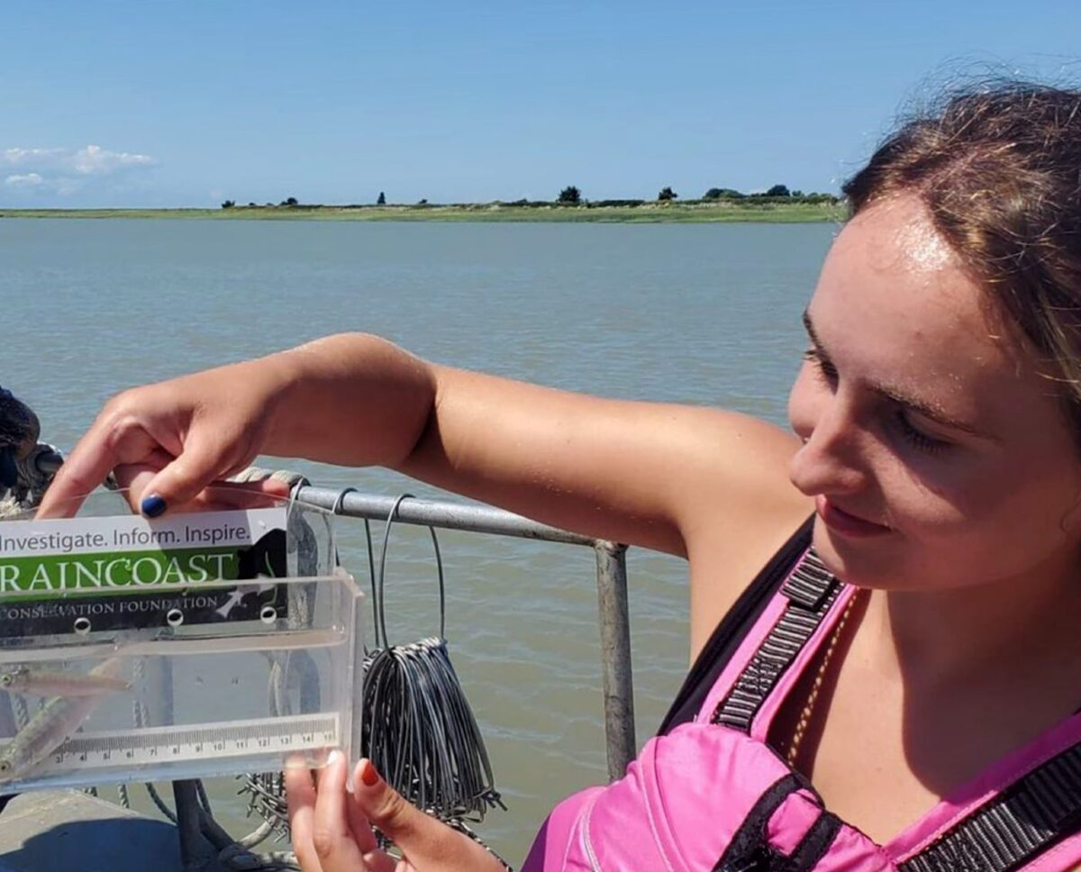 Paige Roper shows us the tiny salmon from the boat on the Fraser Estuary, in the sunshine.